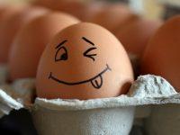 Скорлупа яиц — идеальный источник кальция