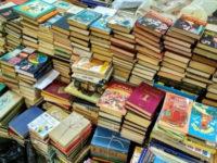 Завалить чиновников книгами Алины Витухновской предлагает РНИ