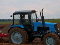 В Беларуси авторитарные методы управления экономикой сдерживают ее развитие