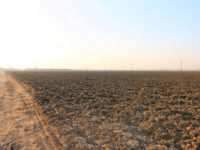 Продажа земли сельхозназначения в Словакии Pezinok